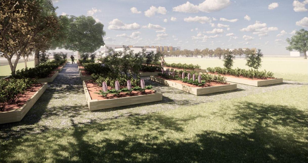 Alamo Colleges Westside Education & Training Center Community Gardens